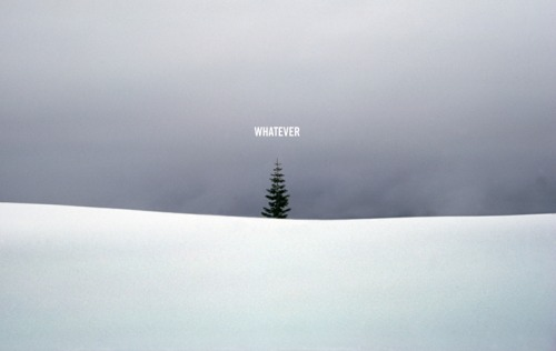 winter whatever